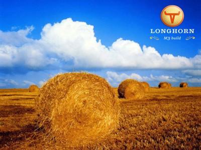 longhorn-original-jpg.jpg